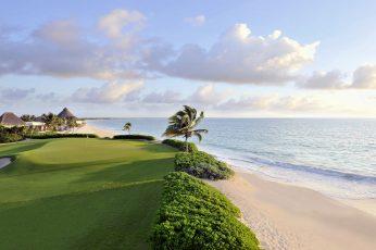 Wallpaper Green Palm Tree, Nature, Landscape, Water, Sea