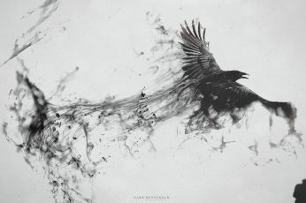 Wallpaper Raven Digital Wallpaper, Eagle Painting, Crow