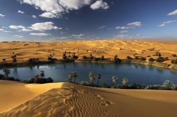Wallpaper Trees On Desert Near Lake, Landscape, Oasis