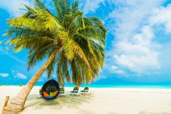 Wallpaper Tropical Beach, Maldives, Tropical Landscape