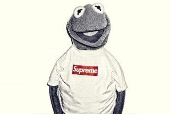 Wallpaper 1920×1080 Kermit The Frog Supreme