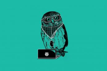 Wallpaper Dj Owl, Owl With Jewelries And Laptop
