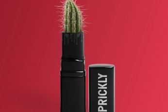 Wallpaper Green Prickly Lipstick With Cactus Plant