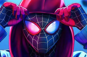 Wallpaper Movie, Spider Man Into The Spider Verse, Marvel
