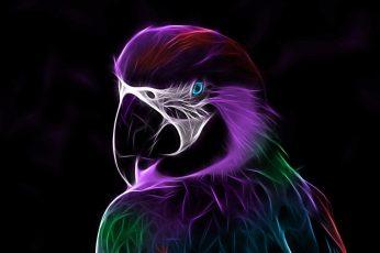 Wallpaper Abstract, Digital Art, Parrot, Light, Artwork