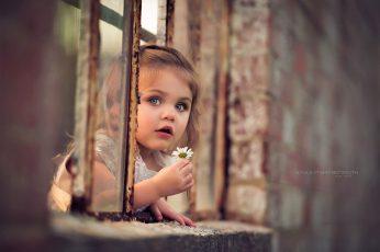 Wallpaper Adorable, Blue, Child, Cute, Daisy, Eyes, Flower