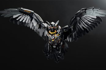Wallpaper Asus, Owl, Pc Gaming, Technology, Simple Background