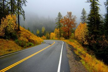 Wallpaper Autumn Road Trip, Trees, Forest, Fall, Roads