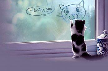 Wallpaper Cat, Kitten, Window, Fog, Miss You, Missing You
