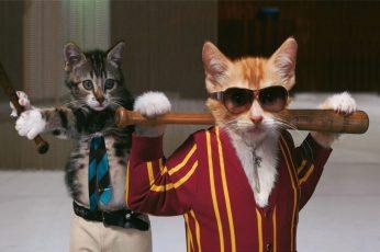 Wallpaper Cats Funny Garfield Kittens Badass