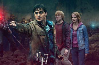Wallpaper Harry Potter Battle Of Hogwarts Harrys Side