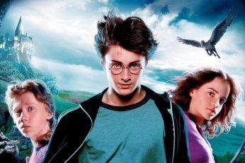 Wallpaper Mens Black And White Crew Neck Shirt, Harry Potter