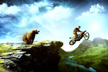 Wallpaper Moto X Bear Chasing, Grizzly Bear; Red And Black