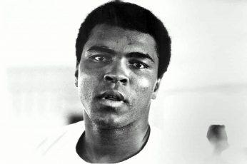 Wallpaper Muhammad Ali, Boxer, Face, Bw, Headshot, Portrai