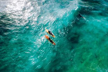 Wallpaper Two Orange Surfboards, Waves, Sea, Surfing, Water