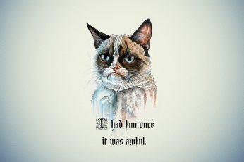 Wallpaper I had fun once it was awful, Grumpy Cat