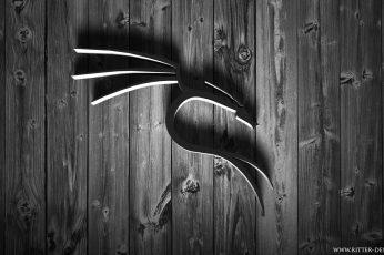 Wallpaper Black Metal Wall Decor, Linux, Kali Linux Nethunter
