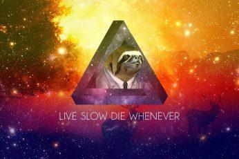 Wallpaper Live Slow Die Whenever, Sloths, Motivation