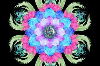 Wallpaper Mandala, Lotus, Patterns, Flower
