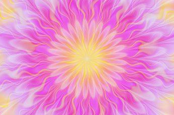Wallpaper Pink And Yellow Mandala