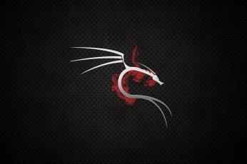 Wallpaper Technology, Kali Linux