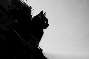Wallpaper Cat Silhouette, Black Cats, Animals, Green Eyes