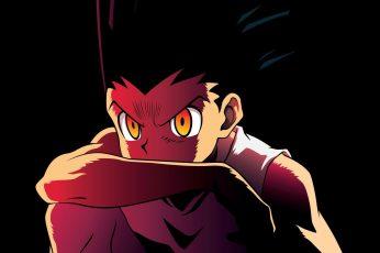 Wallpaper Gon From Hunter X Hunter, Anime, Gon Freecs