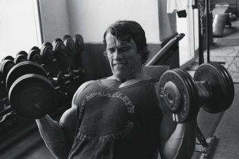 Wallpaper Arnold Schwarzenegger, Bodybuilding, Bodybuilder