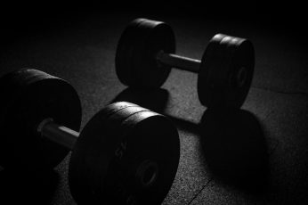 Wallpaper Barbell And Dumbbell Weights For Gym Workout