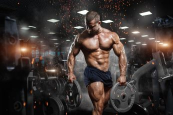 Wallpaper Black Weight Plates, Muscle, Bodybuilding