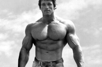 Wallpaper Bodybuilder, Gyms, Muscular, Arnold Schwarzenegger
