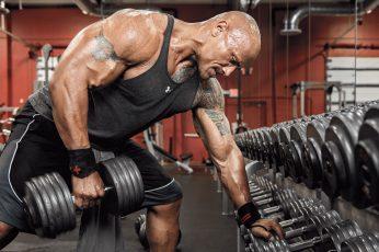 Wallpaper Machine, Dwayne Johnson, The Rock, Workout, Gym