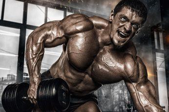 Wallpaper Muscle, Pose, Training, Dumbbells, Gym, Bodybuilder