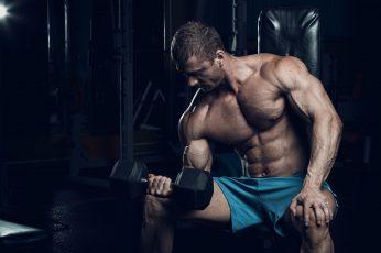 Wallpaper Muscle, Training, Dumbbells, Biceps, Gym, Bodybuilder