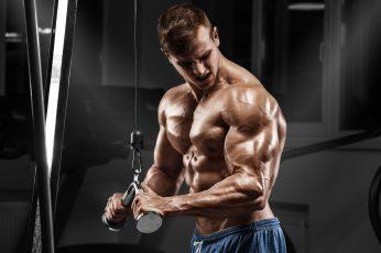 Wallpaper Pose, Fitness, Muscle, Athlete, Simulators