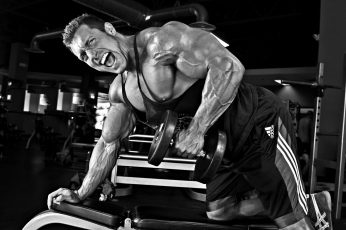 Wallpaper Pose, Muscle, Bodybuilding, Training, Gym