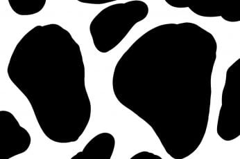 Wallpaper Cow Print, Aesthetic, Cute