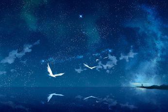 Birds Near Sea Digital Wallpaper, Sea Anemones