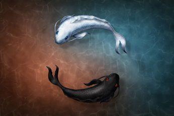 Wallpaper Black And White Coy Fishes Illustration