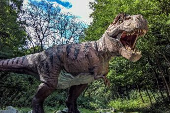 Wallpaper Dino, Dinosaur, Tyrannosaurus, Velociraptor, Tree