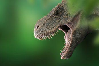 Wallpaper Dinosaur, Tyrannosaurus, T Rex, Prehistoric