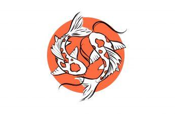 Wallpaper Fishes, Koi, Koi Fish, Minimalist, Yin And Yang