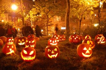 Wallpaper Jack O Lantern Decor Lot, Halloween, Pumpkin