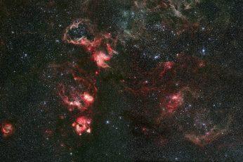 Wallpaper Nebula, Constellation, Gold Fish, Tarantula