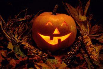 Wallpaper Orange Pumpkin, Halloween, Jack O Lantern, Food